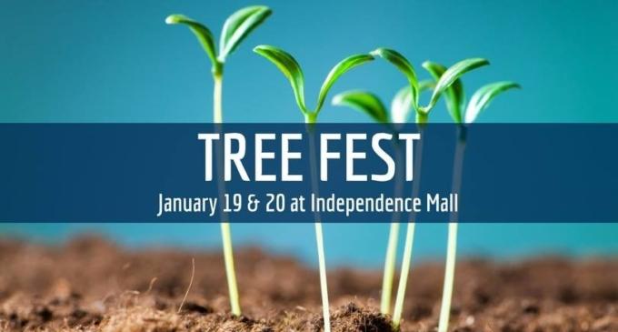 TreeFest 2018